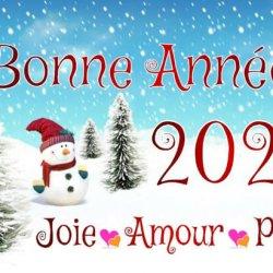 BONNE ANNEE 2021 !